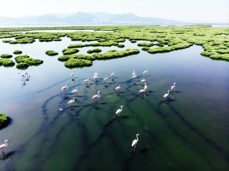 Türkiye'deki milli parklar: Doğanın en güzel hediyeleri