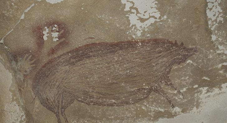 'Dünyanın en eski mağara resmi' yine değişti: Endonezya'daki bir domuz çizimi