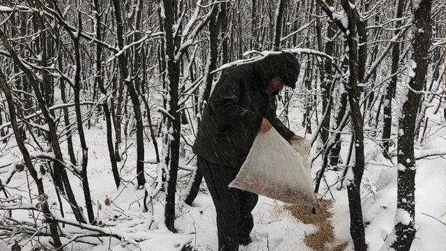 Karlı günlerde yaban hayvanları için doğaya 200 kilogram yem bırakıldı