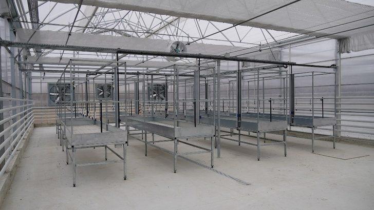 Keçiören'deki modern seraya 'Akıllı İklimlendirme Sistemi'