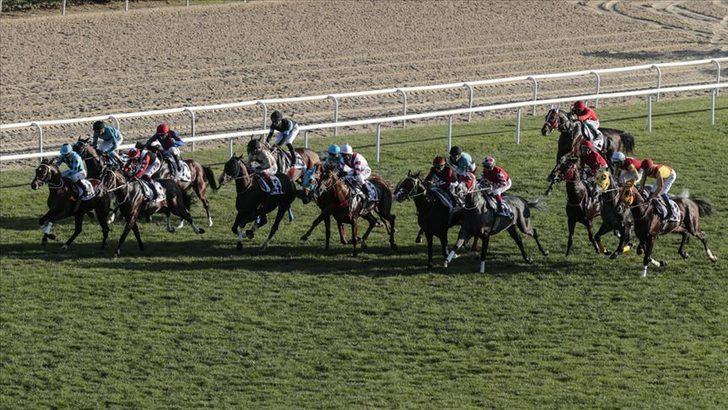 At yarışında dünyanın en iyileri belli oldu