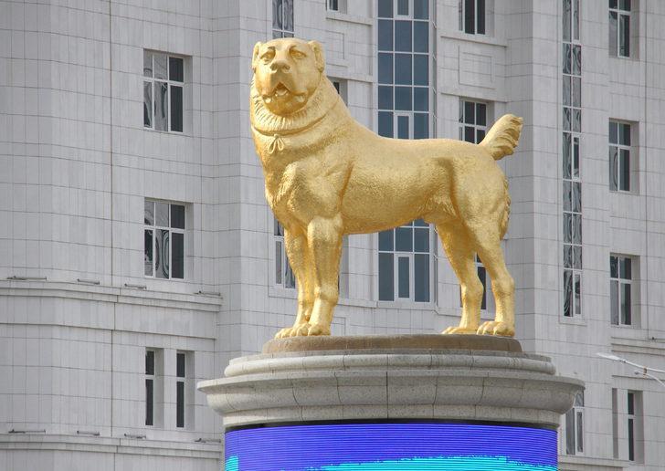 Türkmenistan'da köpekler için bayram ilan edildi!