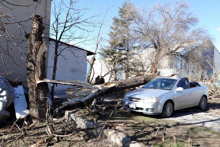 Saniyeler önce park ettiği otomobilinin üzerine ağaç devrildi