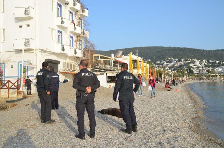 Bodrum'da sahillerde piknik yapmak yasaklandı