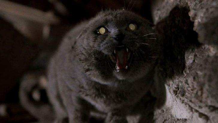 Hayvan Mezarlığı, üçüncü kez filme uyarlanıyor