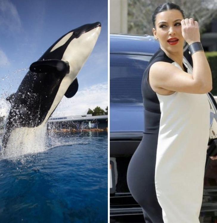 Kim Kardashian'dan itiraf! 'Balinayla kıyasladılar aylarca evden çıkamadım'