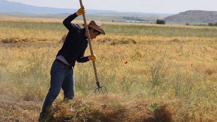 Koruma planı devrede! Çiftçiye 5.5 milyar liralık destek