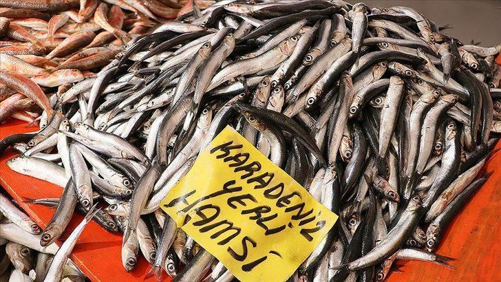 Karadenizli balıkçılar sezonu 'kötü' geçiriyor