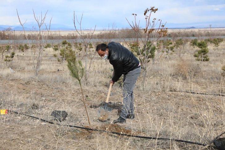 Karabağ Şehitleri Hatıra Ormanı açılış töreni düzenlendi