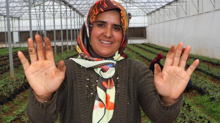 7 kadının turşu başarısı: Almanya'ya ihraç ediyorlar