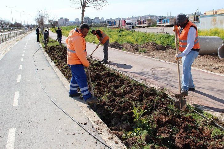 Park ve yeşil alanlarda çalışmaları hız verildi
