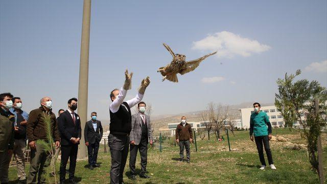 Şırnak Valisi Pehlivan tedavisi tamamlanan kuşu doğaya bıraktı