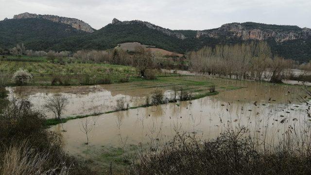 Göksu nehri taştı, tarım arazileri su altında kaldı