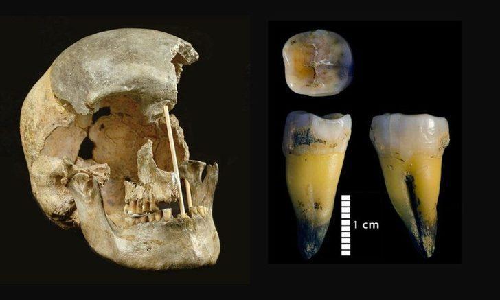 Modern insana ait en eski DNA bulundu!