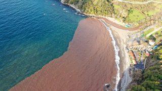 Denizin rengi çamura döndü