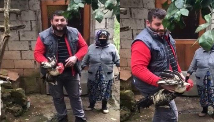 Trabzon'da 'Anne' diye bağıran horoz kesilmekten kurtuldu thumbnail