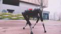 AlphaDog robot köpeği Boston Dynamics'in Spot'una rakip oldu!