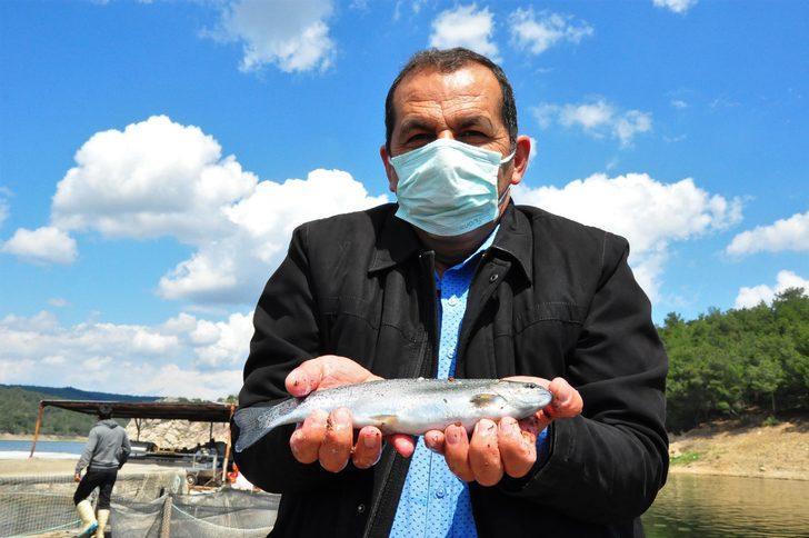 Denizi olmayan kentte üretiliyor! Bu balığı alabilmek için onlarca ülke sırada bekliyor