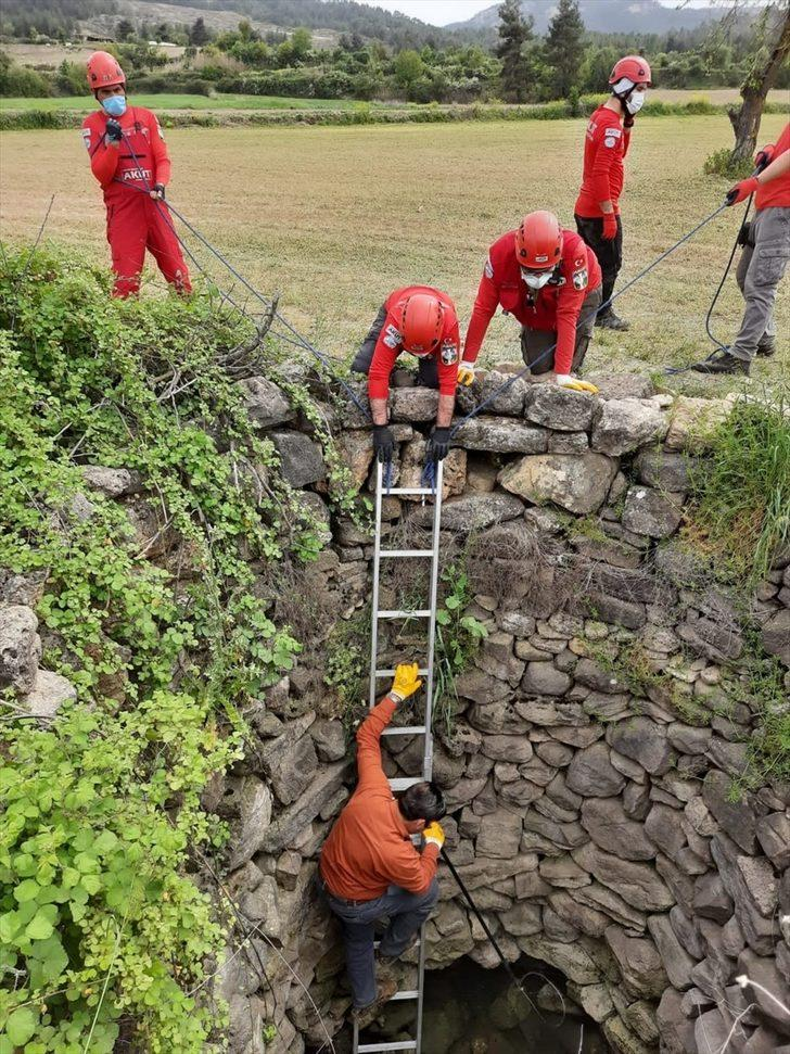 Denizli'de su kuyusuna düşen iki çakal kurtarıldı