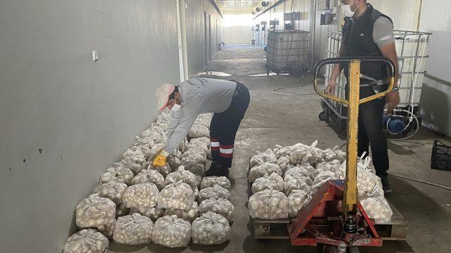Nevşehir Belediyesi üreticilerden aldığı sebzeyi vatandaşa dağıttı