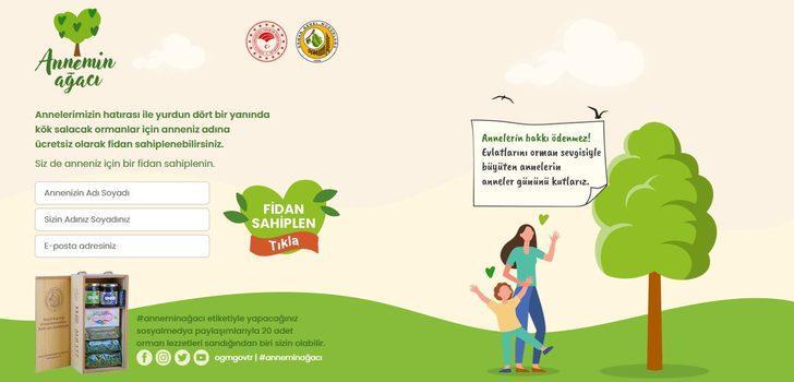 Annemin Ağacı Kampanyası'na nasıl başvuru yapılır? Annemin Ağacı Kampanyası nedir?
