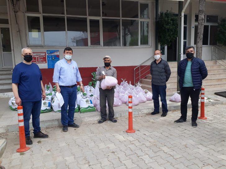 Meşhur Göl fasulyesine bin dekarlık destek projesi