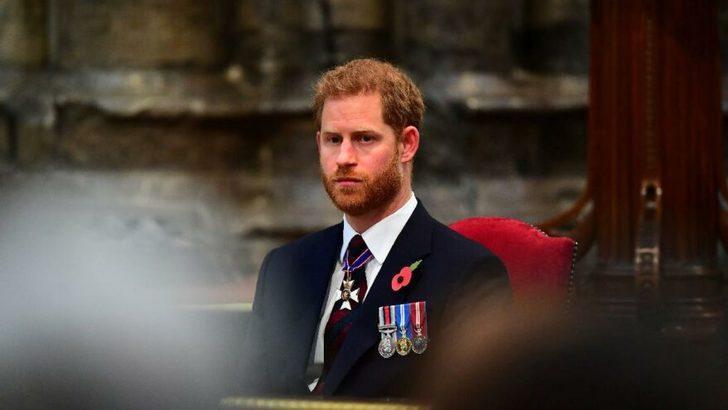 Prens Harry ipleri kopardı: Hayvanat bahçesi gibi