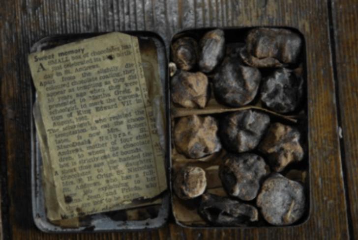 Kemik çorbasından bataklık yağına! Arkeologlar tarafından keşfedilen dünyanın en eski yiyecekleri