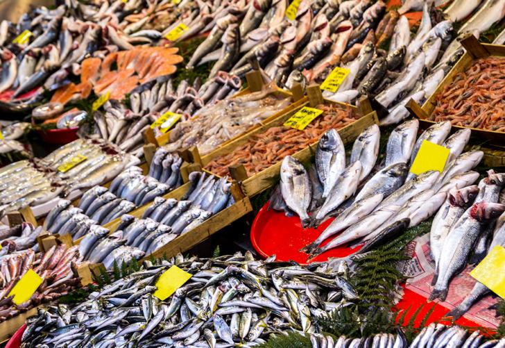 Hangi balık türleri daha riskli? Bu balık türleri sağlığınızı olumsuz yönde etkileyebilir