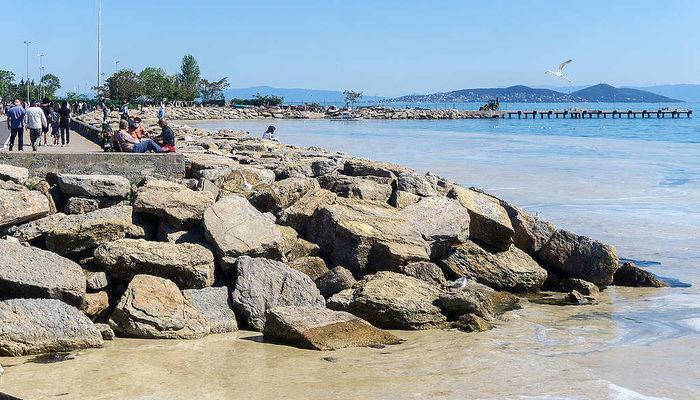 Deniz Salyası (Müsilaj) nedir? Deniz Salyası neden olur ve nerelerde var?