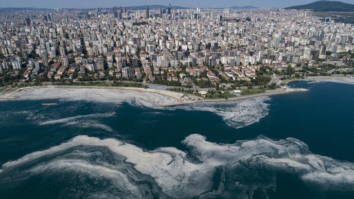 Deniz salyası: Müsilaj eylem planı kapsamında hangi adımlar atılacak, uzmanlar ne düşünüyor?