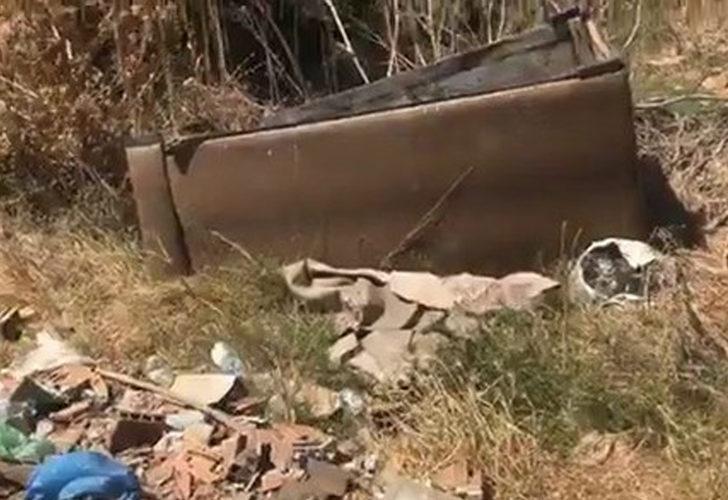 Kanepe hurdası için ormanı yakıyordu! 155 bin TL para cezasına çarptırıldı