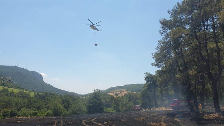 Osmaniye'de ormanlık alana sıçrayan anız yangını kontrol altına alındı