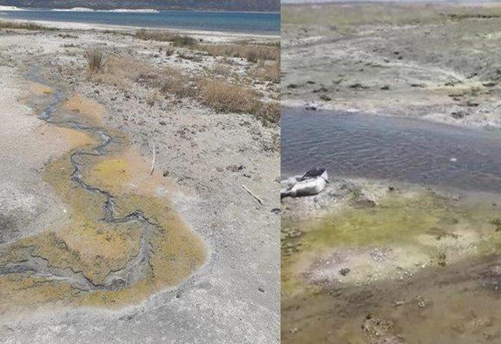 """""""Salda Gölü'ne kanalizasyon akıyor"""" iddiası! Çevre ve Şehircilik Müdürü Murat Alacatlı'dan açıklama"""