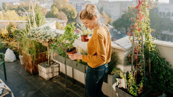 Balkon ve bahçelerini yenileyecekler için dekorasyon önerileri