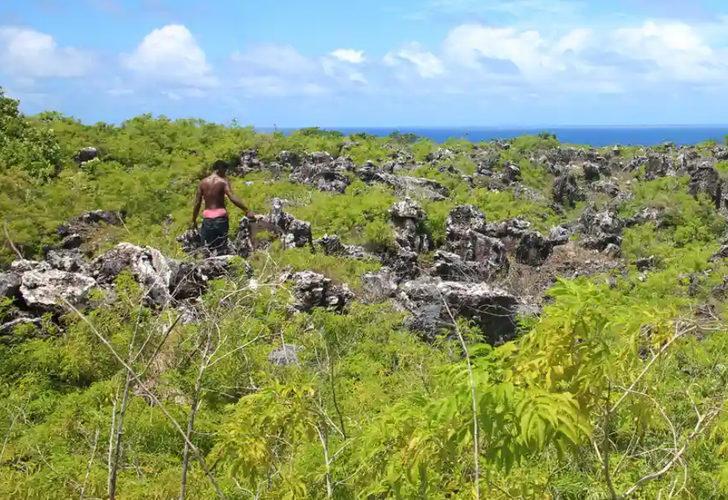 Zengin ülkelerin sömürdüğü Banaba adasında içme suyu kalmadı