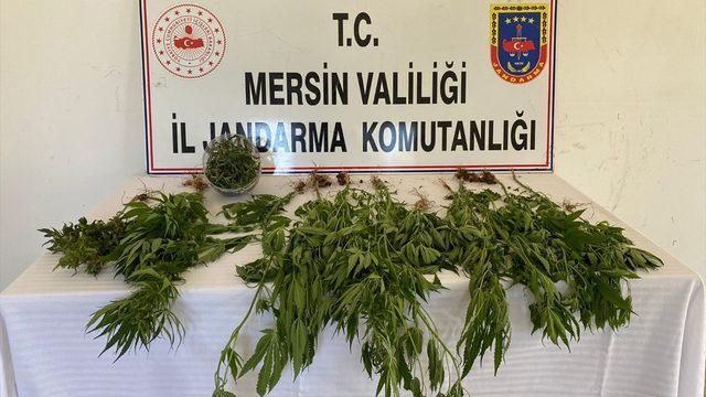 Mersin'de uyuşturucu operasyonunda 8 şüpheli yakalandı