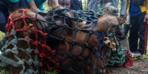 Yeni evine böyle taşındı! 15 yaşındaki orangutan...