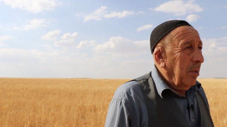 Güneydoğu'da kuraklık nedeniyle tarım alanları büyük zarar gördü: Tarlamızın beyin ölümü gerçekleşti