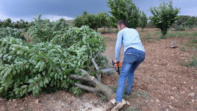 """Ağaçlarını kesti! """"İşçi daha çok kazanıyor"""""""