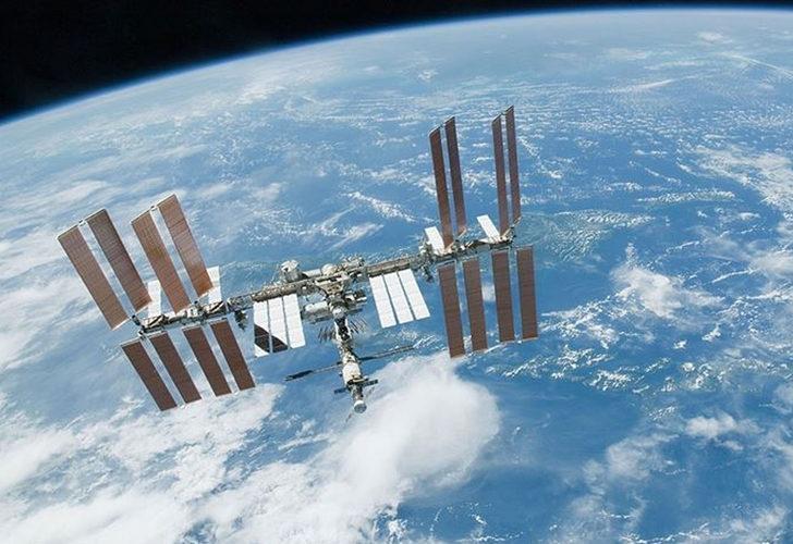 Uzay uçuşlarının insan sağlığına etkisi mürekkep balıkları sayesinde tespit edilebilecek