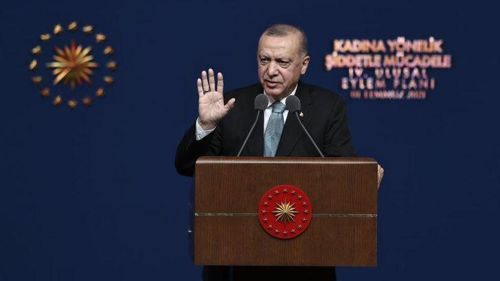 Erdoğan'ın açıkladığı kadına şiddetle mücadele eylem planı hak savunucularına 'güven vermedi'