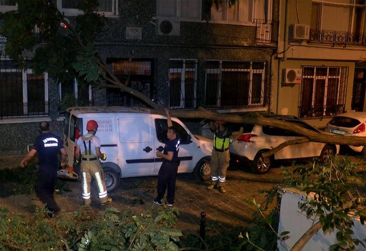 Beşiktaş'ta akılalmaz olay! Kökünden çıkan ağaç aracın üzerine devrildi