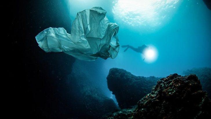 3 Temmuz Dünya Plastik Poşet Kullanmama Günü: Plastik poşetler hakkında bilmeniz gerekenler