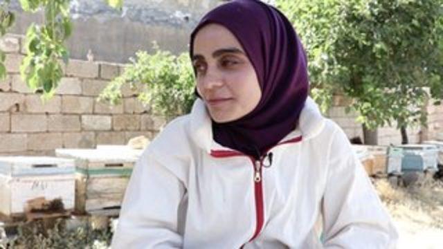 Mardin'de atanamadığı için arıcılık yapan Kürtçe öğretmeni Vahdet Uçar: 'Arılar çalışırken benim tembellik yapmam insan olarak zoruma gidiyor'