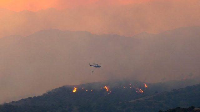 İtfaiyeciler yangının bir ulusal parka ulaşmasını engellemeye çalışıyor