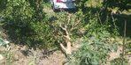 Konya'da otomobilin çarptığı bahçedeki kişi hayatını kaybetti