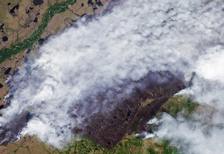 Kanada ve ABD'nin ardından Rusya'da da orman yangınları başladı