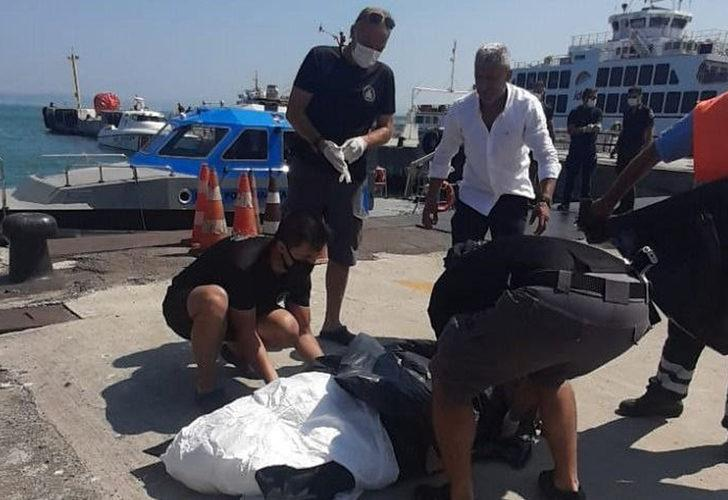 Yalova'da denizde erkek cesedi bulundu