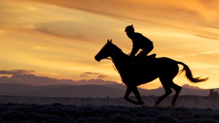 İngiltere ve İrlanda'da kariyeri biten binlerce yarış atı mezbahalarda öldürüldü